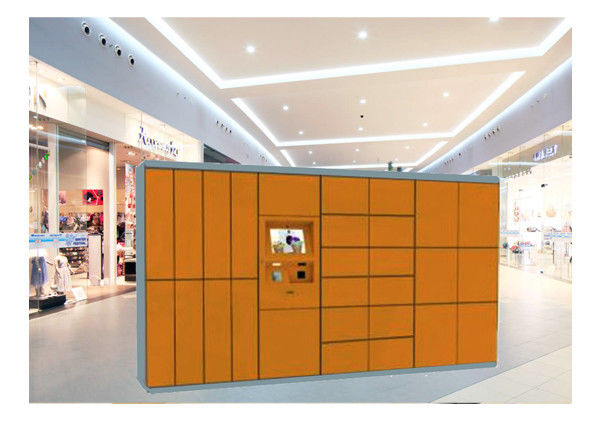 Clothes Drying Laundry Service Equipment Storage Closet Cabinet Steel Locker With Network
